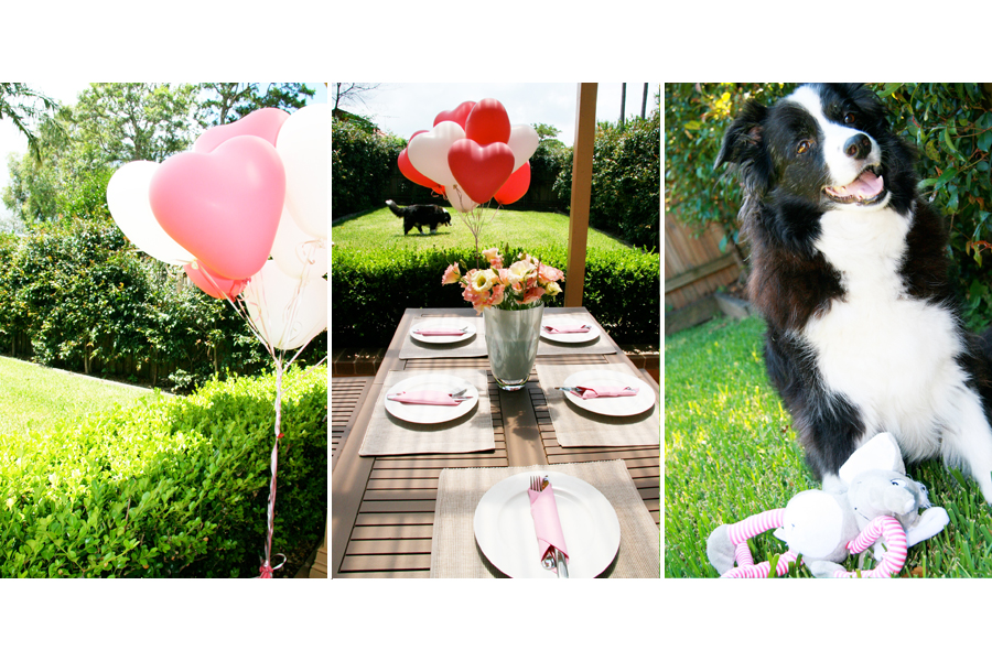 Dog Birthday Party | Pretty Fluffy