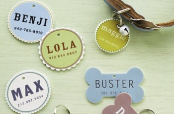 DIY Dog Tags