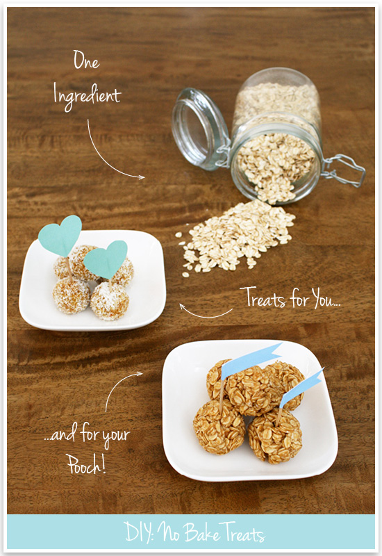 Our favourite no bake dog treats recipe - less than 5 ingredients, and take less than 15 minutes to make. Healthy, yummy and easy homemade dog treats.