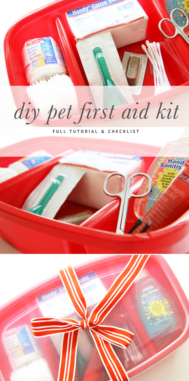 DIY Pet First Aid Kit - A full tutorial and checklist on how to make your own DIY Pet First Aid Kit for pet related emergencies and accidents. Includes pet medical tips. | Pretty Fluffy