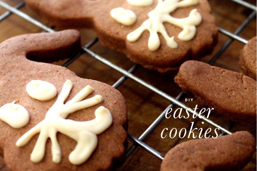 DIY Dog Easter Cookie Kit   Pretty Fluffy