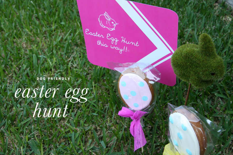 Pet Friendly Easter Egg Hunt | Pretty Fluffy