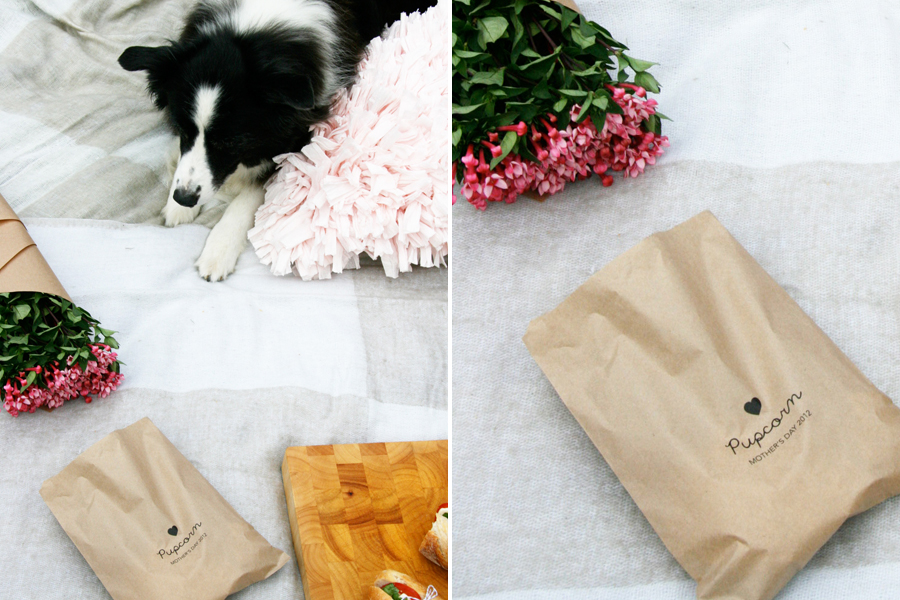 Outdoor Cinema Popcorn Bags | Pretty Fluffy