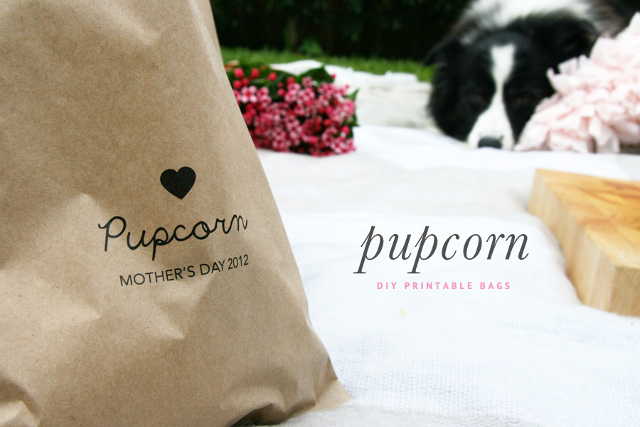 DIY Outdoor Cinema Popcorn Bags | Pretty Fluffy