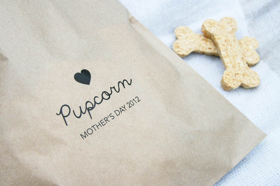 Outdoor Cinema Pupcorn Bags for Dogs | Pretty Fluffy