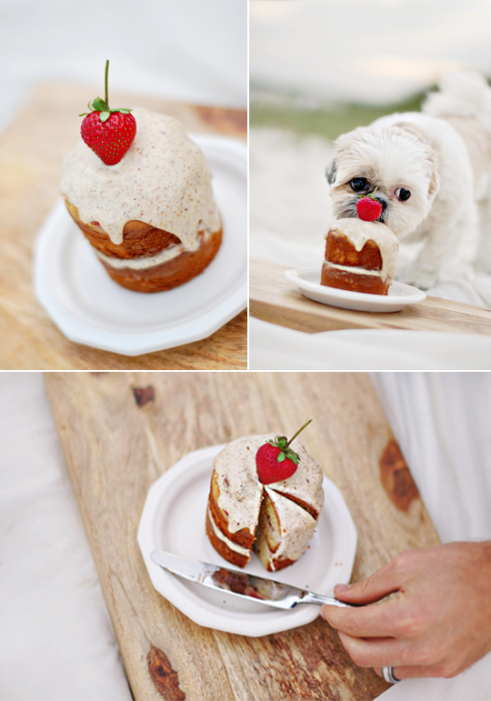 The best Dog Birthday Cake Recipe of all time. Super easy to make, healthy, dog-safe ingredients and 100% tasty! Grab the FREE recipe here.