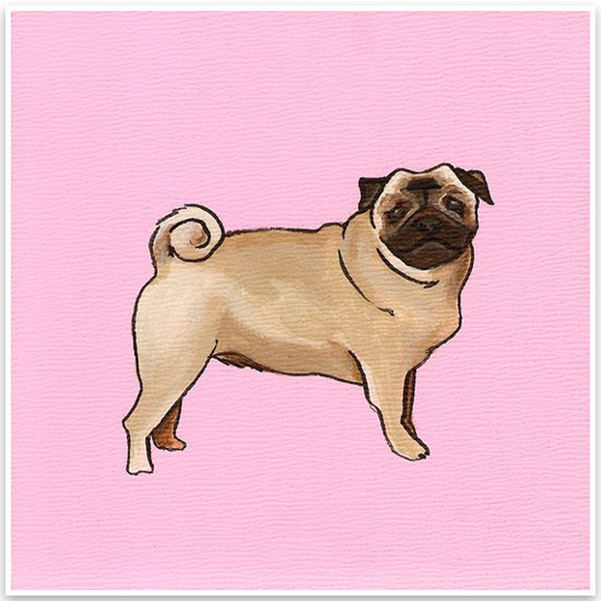 Yellow Brick Home Pet Portraits Pug