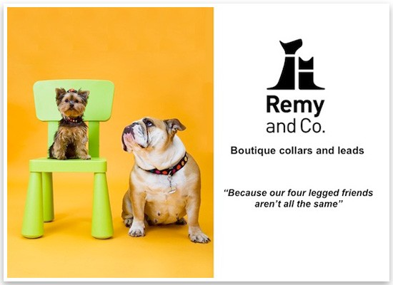 Remy and Co | Pretty Fluffy Sponsor