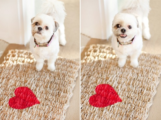 Dog Valentine DIY | Pretty Fluffy