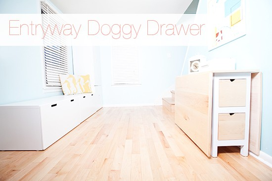 Entryway-Pet-Storage