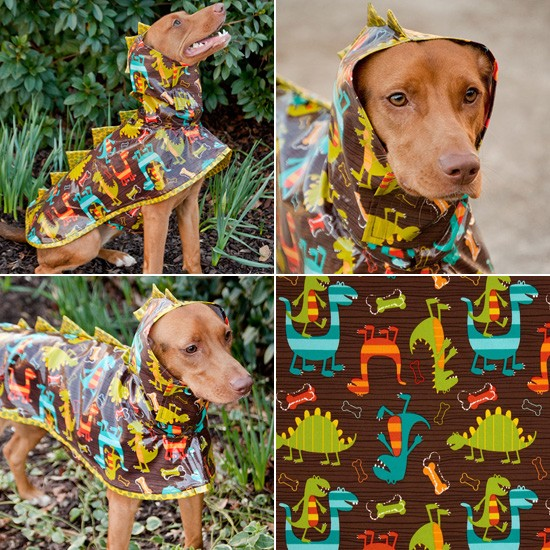 Dinosaur Dog Raincoat by TreeParlor | Shop It | Pretty Fluffy