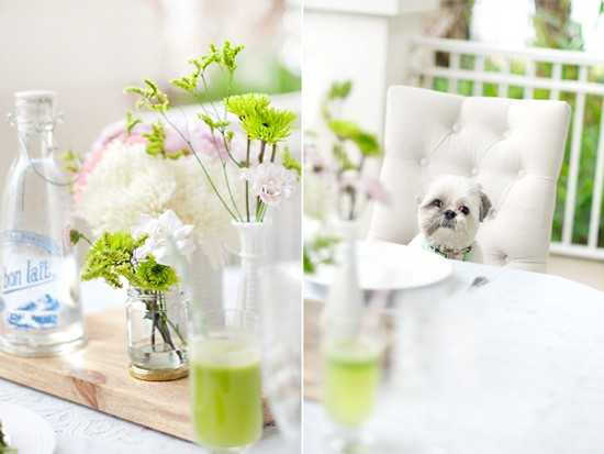 Dog-Friendly-St-Patricks-Brunch