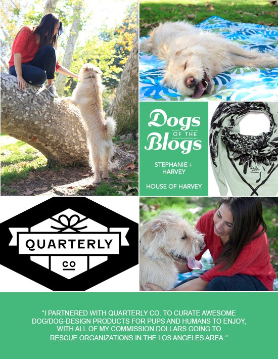 Dogs of the Blogs | House of Harvey | Pretty Fluffy