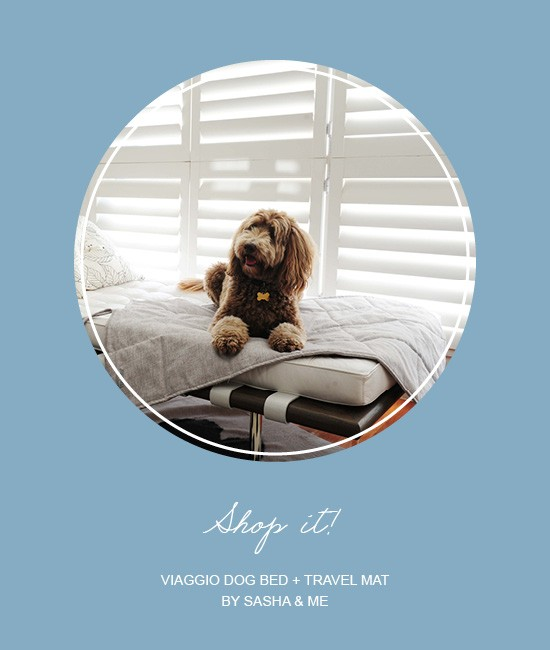Viaggio Dog Bed and Travel Mat  | Pretty Fluffy