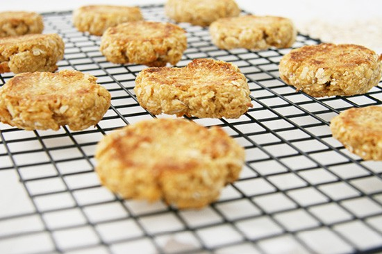 Anzac Biscuit Recipe for Dogs | Pretty Fluffy