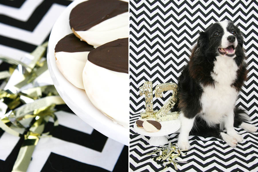 Dog Birthday Cookie Recipe | Pretty Fluffy