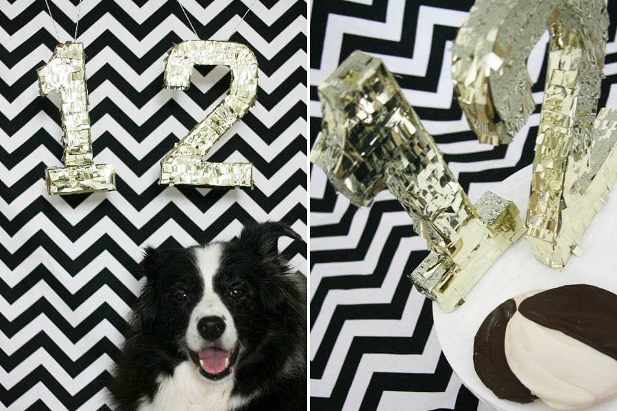 Black + White + Gold Dog Birthday Party | Pretty Fluffy