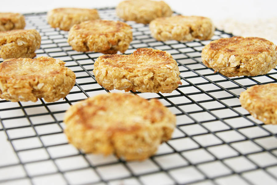 ANZAC Biscuit Dog Treat Recipe | Pretty Fluffy