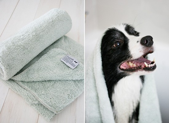 Dog Tails Plush Microfiber Pet Towel | Pretty Fluffy