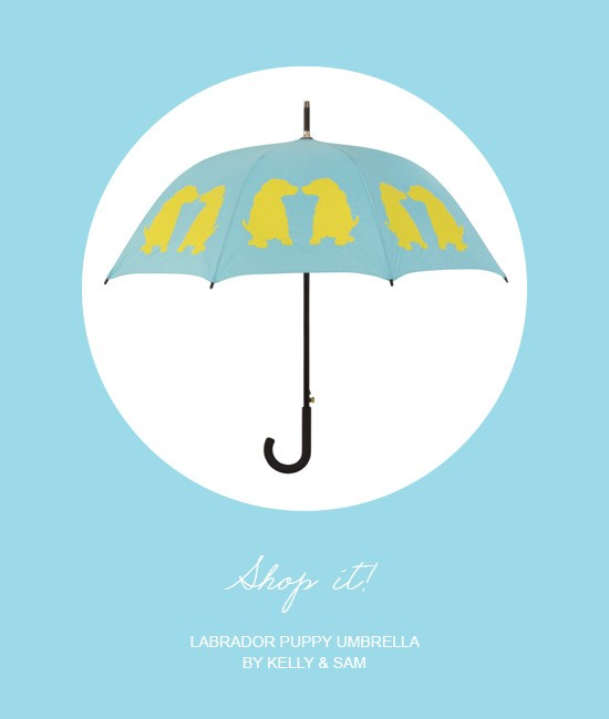 Labrador Puppy Umbrella by Kelly & Sam | Pretty Fluffy
