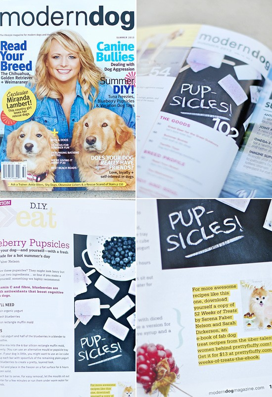 '52 Weeks of Treats' Dog Treat Book in Modern Dog Magazine | Pretty Fluffy