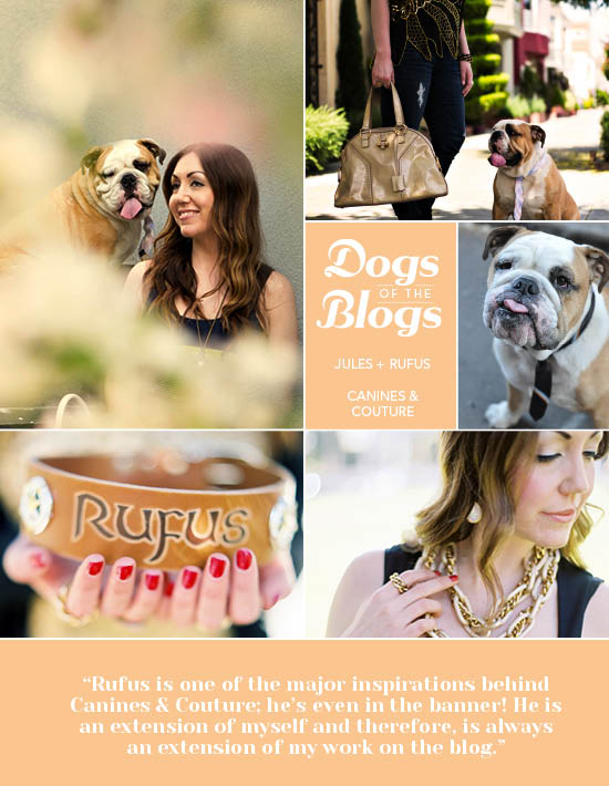 Dogs of the Blogs Canines & Couture | Pretty Fluffy