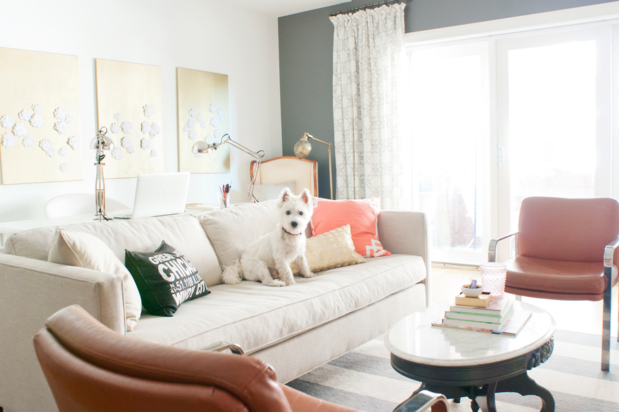 Jess Lively Pet Friendly Home Tour | Pretty Fluffy