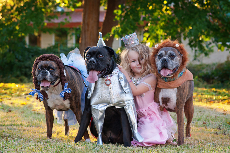 Trick or Treat - Wizard of Oz Halloween!