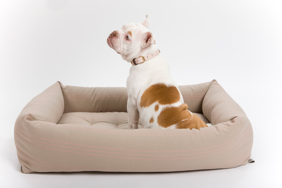 WIN this Mungo & Maud Bolster Dog Bed > Enter the Pretty Fluffy Christmas Giveaway - over $2000 in prizes to be won.