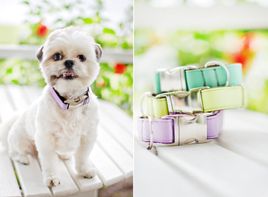 WIN a Mattie & Margot Collar & Lead Set > Enter the Pretty Fluffy Christmas Giveaway - over $2000 in prizes to be won.