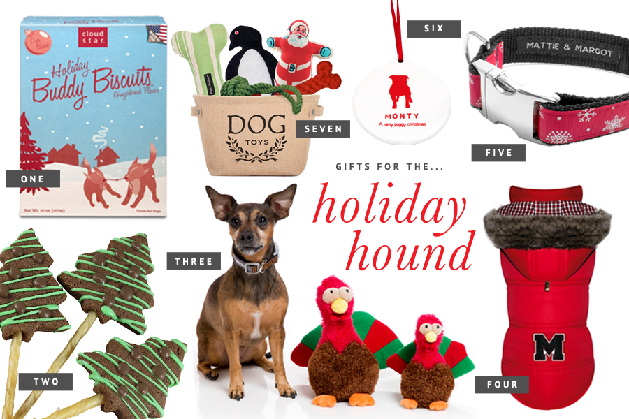 Holiday gift guide for pets the hound