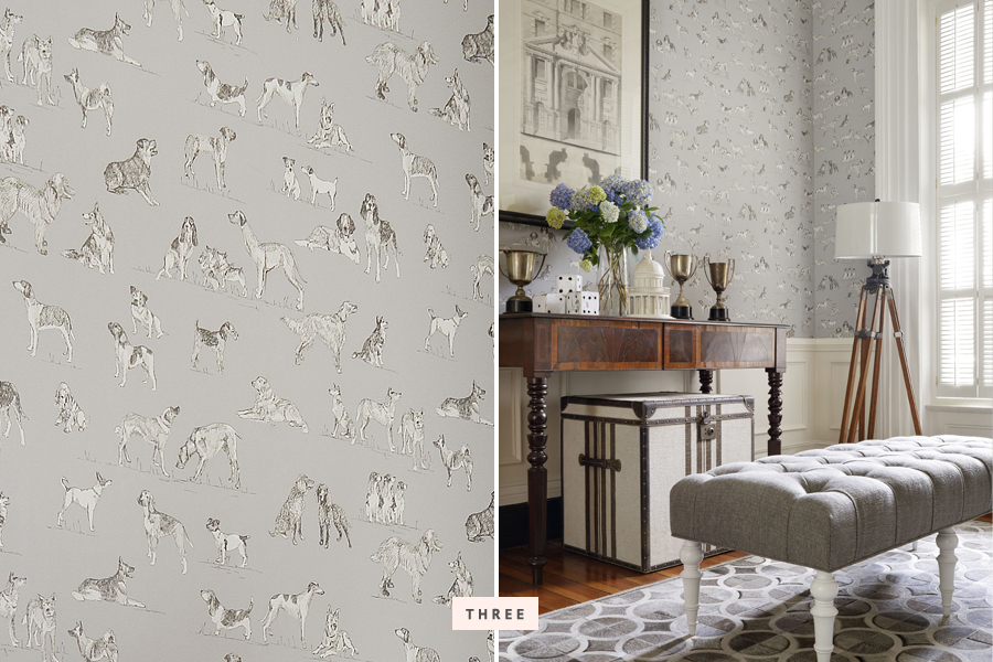 Dog Print Wallpaper trends: dog wallpaper decor | pretty fluffy