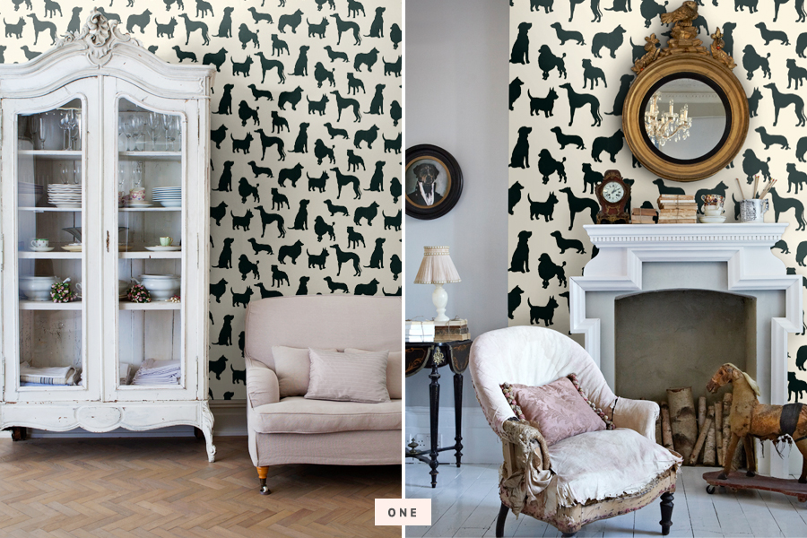 Trends dog wallpaper decor pretty fluffy for Home trends wallpaper
