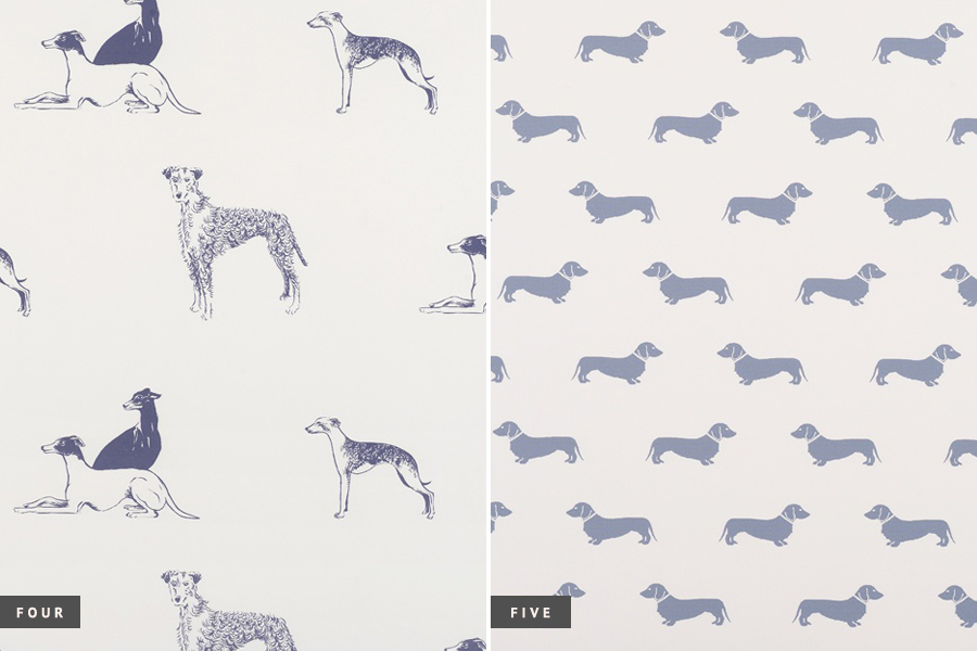 Trends Dog Wallpaper Decor Pretty Fluffy