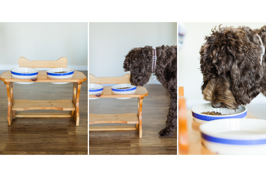 Pet Friendly Home Tour | Annika Meling and Baloo the Newfypoo | Pretty Fluffy