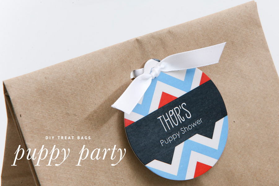 DIY Doggie Party Bags - Puppy Party