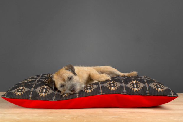 Charlie Be Good Aztec Bed