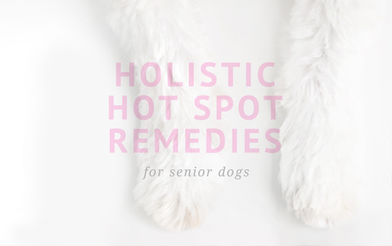 Holisic-Hot-Spot_Remedies