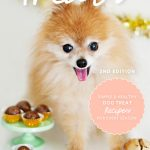 52 Weeks of Treats eBook - Simple and Healthy Dog Treat Recipes for Every Season
