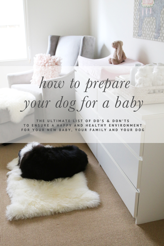 How to Prepare Your Dog for a Baby - The ultimate list of DO'S & DON'TS | www.prettyfluffy.com