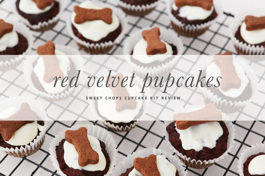 Sweet Chops Cupcakes Kit Review - Make at home doggie Red Velvet cupcake smothered in yoghurt, topped with a carob biscuit treat. | www.prettyfluffy.com