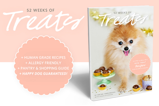 The Ultimate Dog Treat Recipe Book - 52 Weeks of Treats - Simple and Healthy Dog Treat Recipes for Every Season