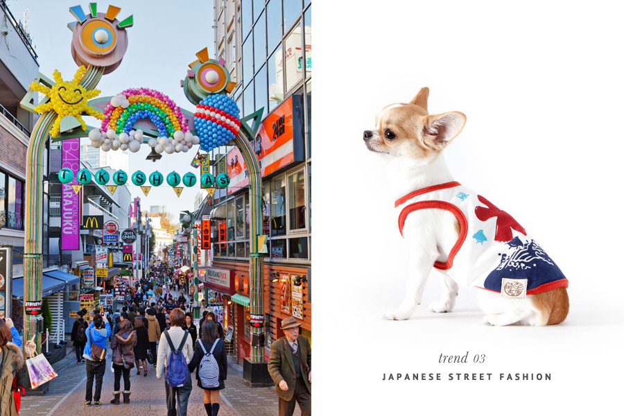 The Hottest Pet Trends for 2015 - Japanese Street Fashion