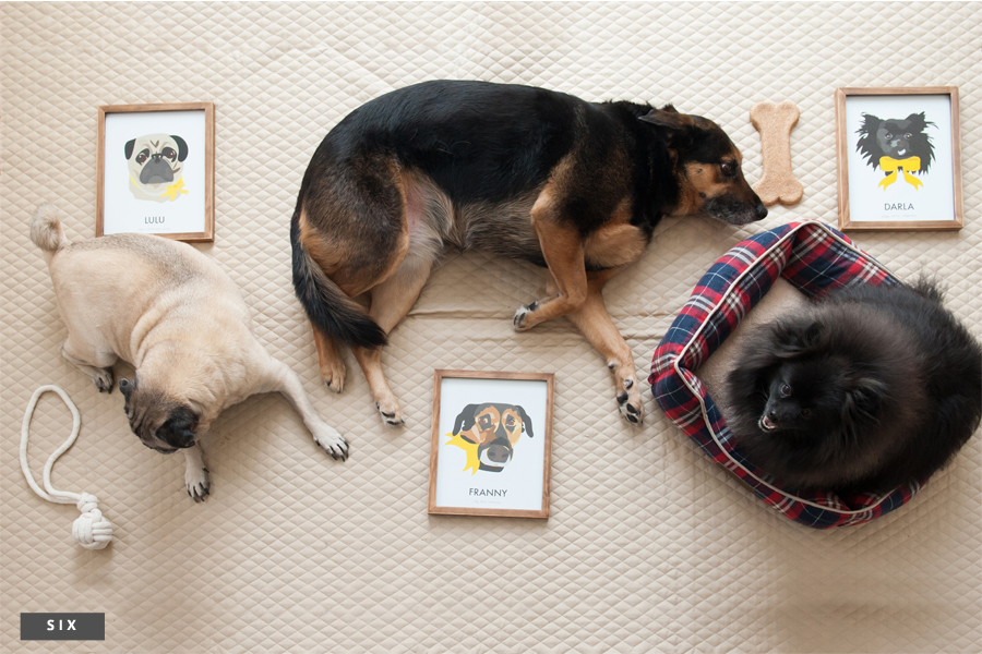 7 of the Best Pet Portrait Artists