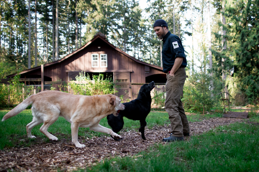 Conservation Canines by Jaymi Heimbuch Animal Photography