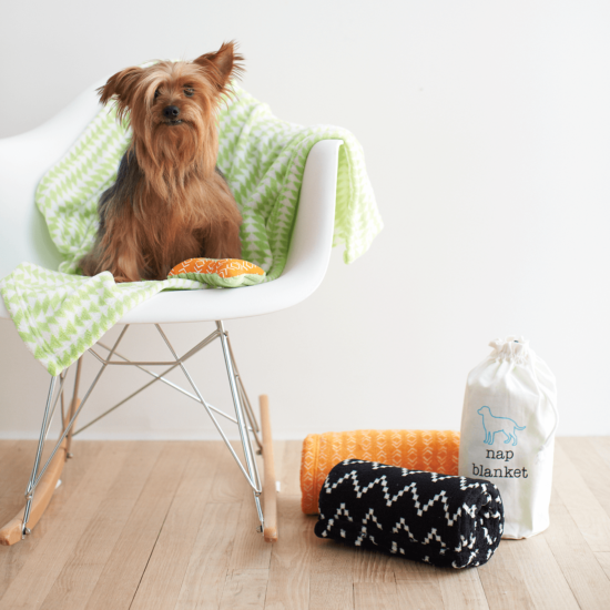 Finally! A dog product range that is on trend and masculine - Bright colours, bold designs & handy products that you'll wonder how you ever did without, the new Territory Dog Collection has it all.