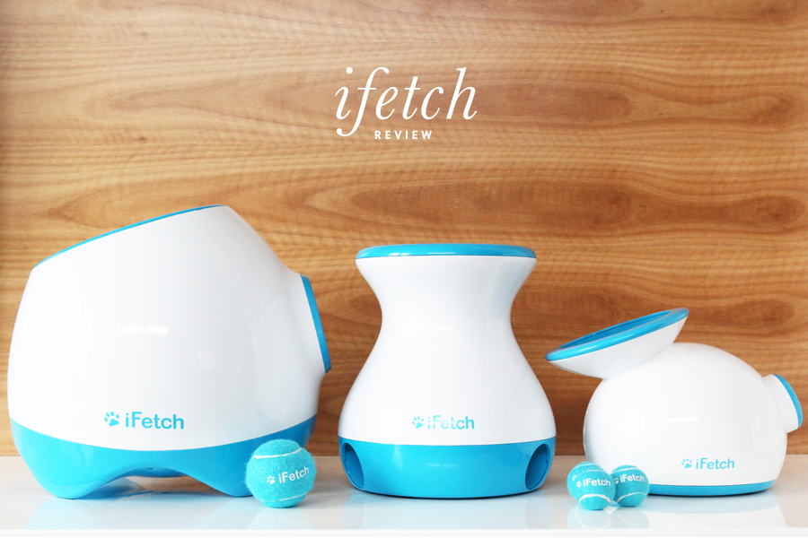 For more visit our full review of the iFetch Frenzy, iFetch Too and iFetch Original automatic ball launchers and fetch dog toys. Includes which toy is right for your dog!