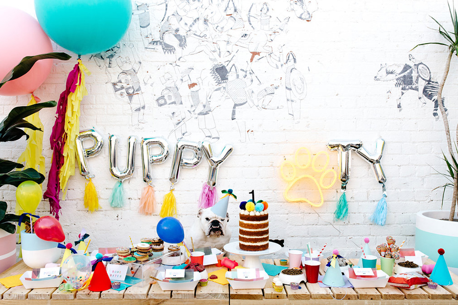 Puppy Party! Doggie smash cakes, puppy teepee chill out zones, a grooming salon and photo booth - see the all the photo inspiration on how to throw your own puppy party.