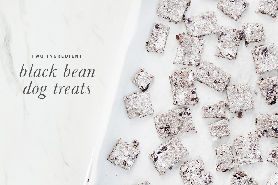 Make your own 2 ingredient dog treats with our easy to follow recipe. Grain free, and super yummy - grab your free recipe now.