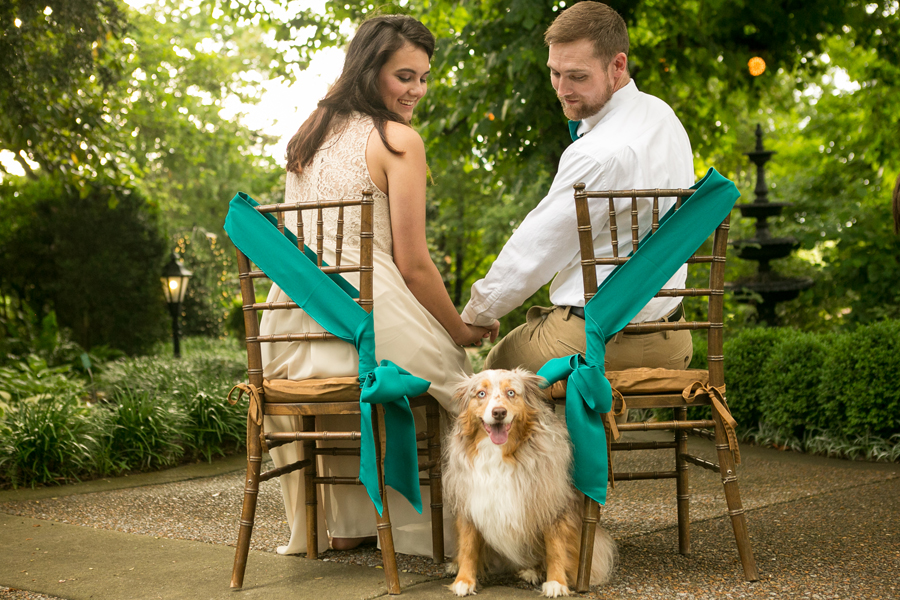 Expert tips on how to include your dog in your wedding - styling tips, safety guidelines, and everything you need to keep the bride, groom & pup happy.